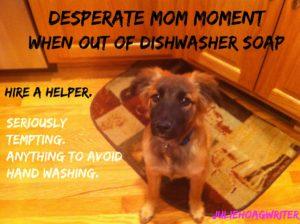 frida-dishwasher-with-correct-spelling