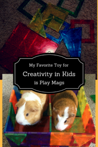 Play Mags Magnetic toy guine pig corral