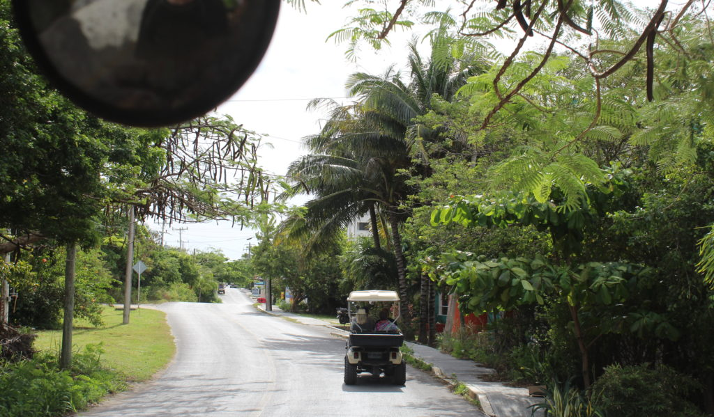 View while riding in golf cart Isla Mujeras