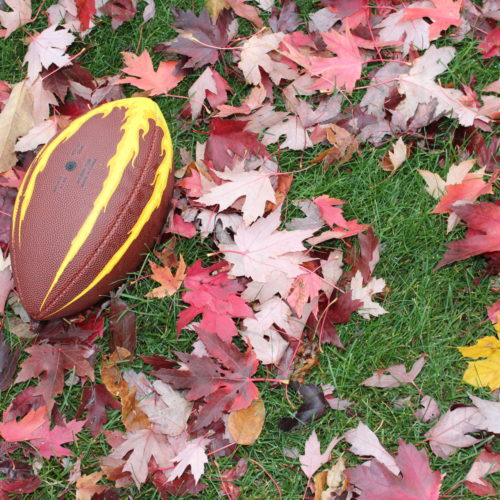Football in fall leaves