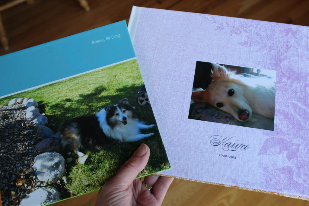 Scrapbooks I've made to honor the memory of our beloved dogs