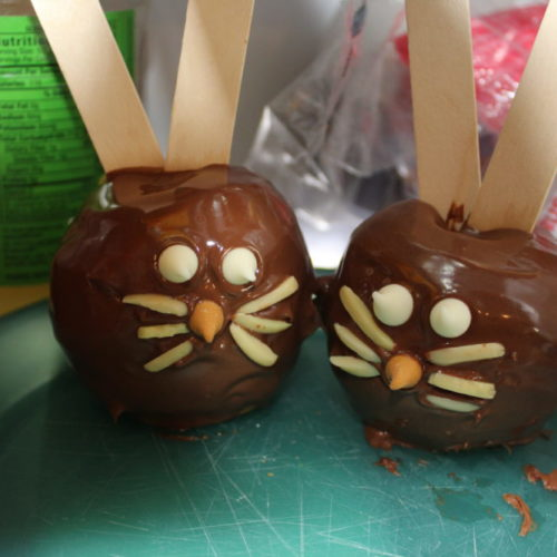 Store apple bunnies in the fridge. These two apple bunnies are so funny, they appear to be looking at each other! Homemade Easter treat.