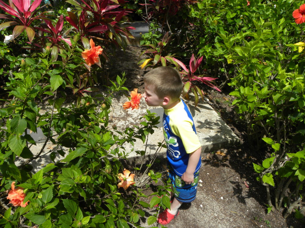 Taking time to smell the flowers at Atlantis Paradise Island Resort Bahamas