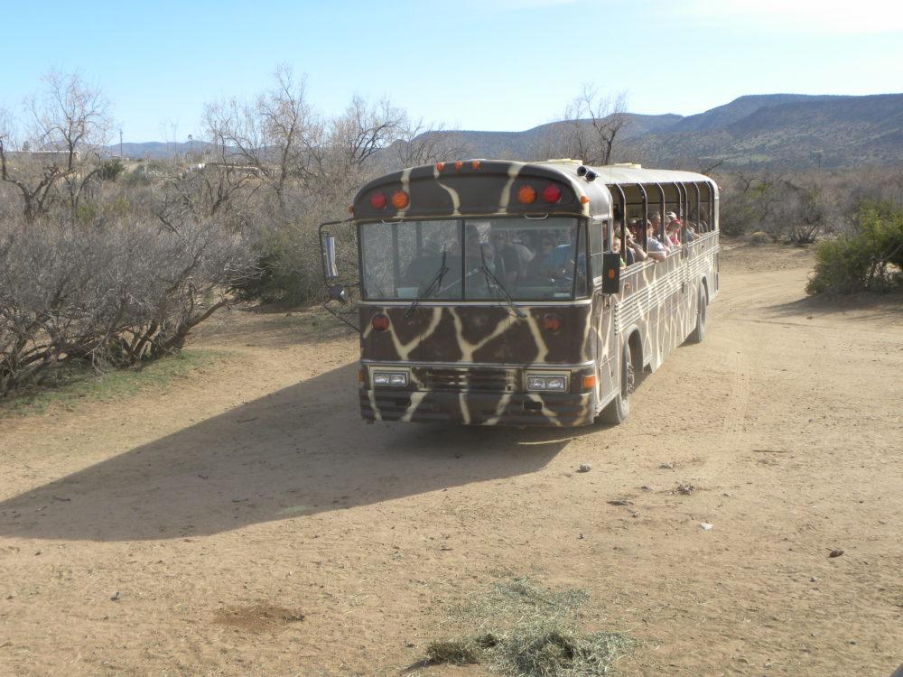 Out of Africa Bush Safari bus Camp Verde Arizona
