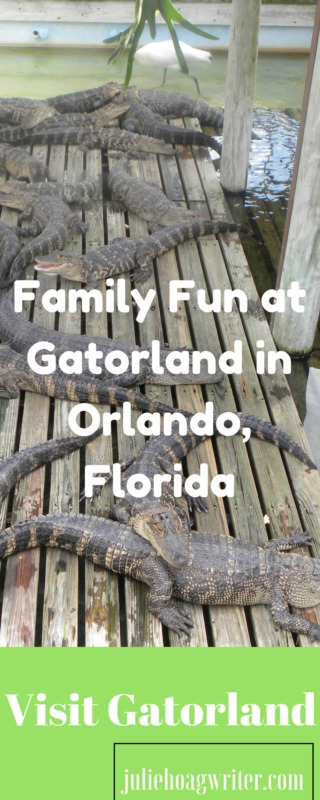 Family Fun at Gatorland in Orlando, Florida. So many alligators to view here and other animals as well. An awesome alligartor wrangler wrestles a gator at a show. Florida travel. Florida Travel destinations. Florida Travel ideas. Family vacation ideas. Family vacation boys will love. vacation tips with kids. wildlife park. family ideas. Family attraction. vacation reviews. Travel fun. affilate links.