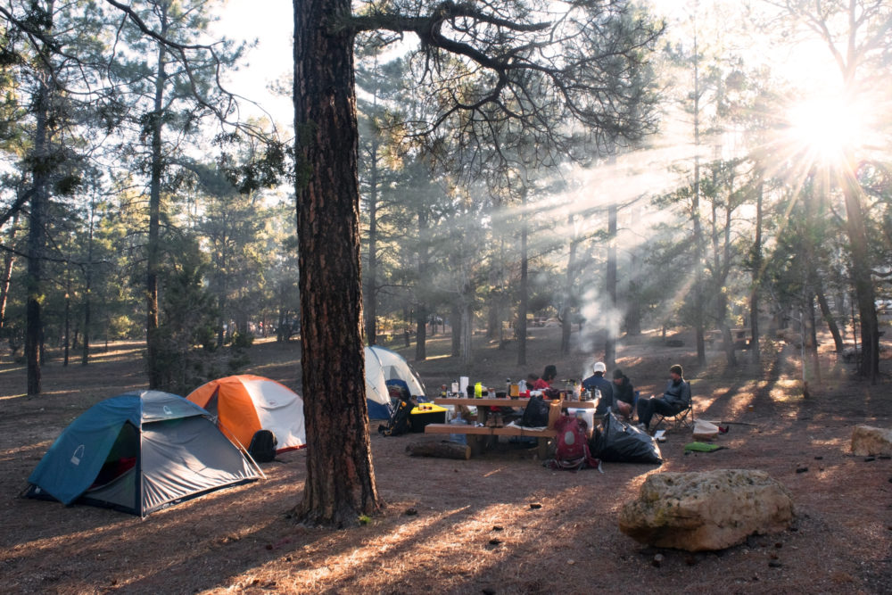Family camping. Campsite with tents in the woods. Family travel camping trip tips. 20 things make family camping easier.
