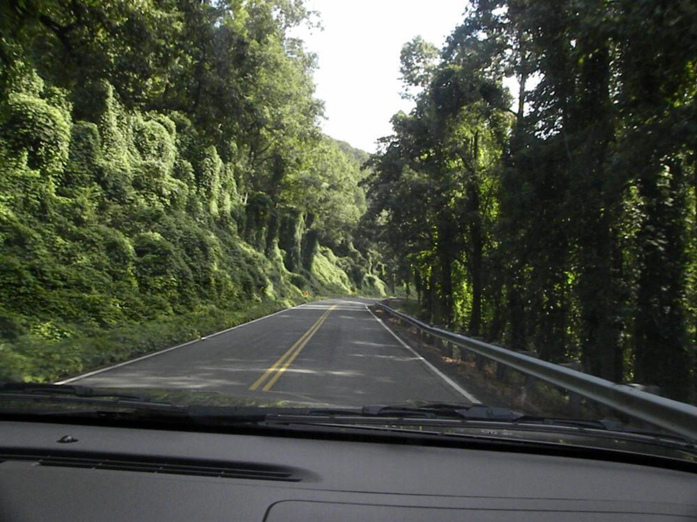 Appalachian Mountains drive