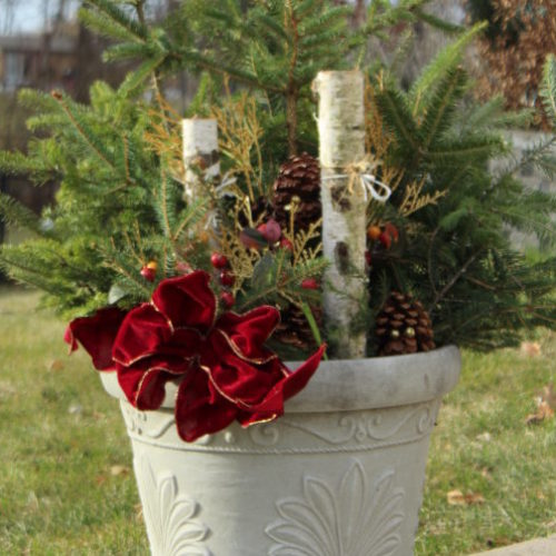 Cheap Outdoor DIY Christmas Decoration for $10