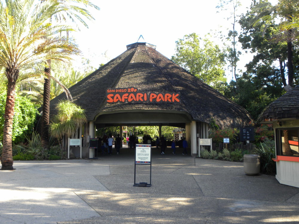 San Diego Zoo Safari Park entrance #zoo #sandiegozoosafaripark #sandiego #visitcalifornia #familyattractions #ustraveldestination #familytraveldestination