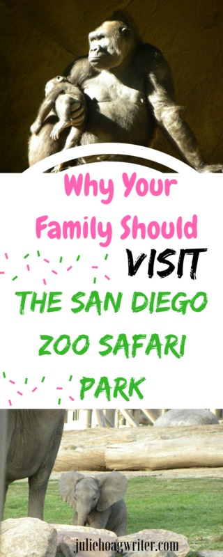 Why Your Family Should Visit the San Diego Zoo Safari Park. Family Fun. Visit San Diego. What to do in San Diego for families. #sandiego #sandiegozoosafaripark #california #californiaadventure #visitsandiego #visitcalifornia #touristattractions #TouristGuide #travel #ustravel #familyfun #zoo #familyactivity #educational #vacationdestination #familytrips