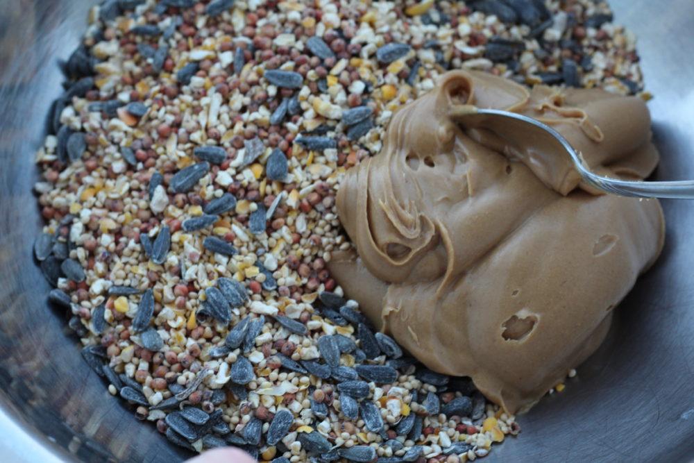 DIY Peanut Butter Bird Seed Suet 2 ingredients