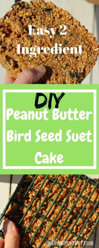DIY Peanut Butter Bird Seed Suet Cake Easy to make kid activity Family activity