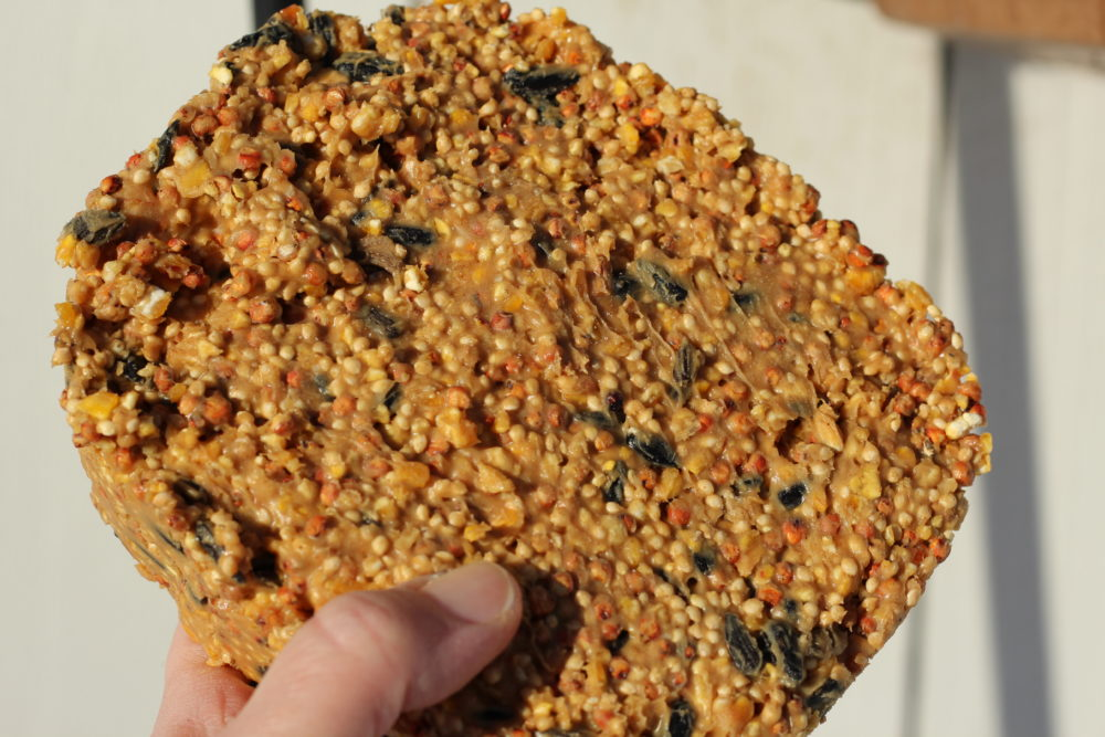 DIY Peanut Butter Bird Seed Suet held in hand
