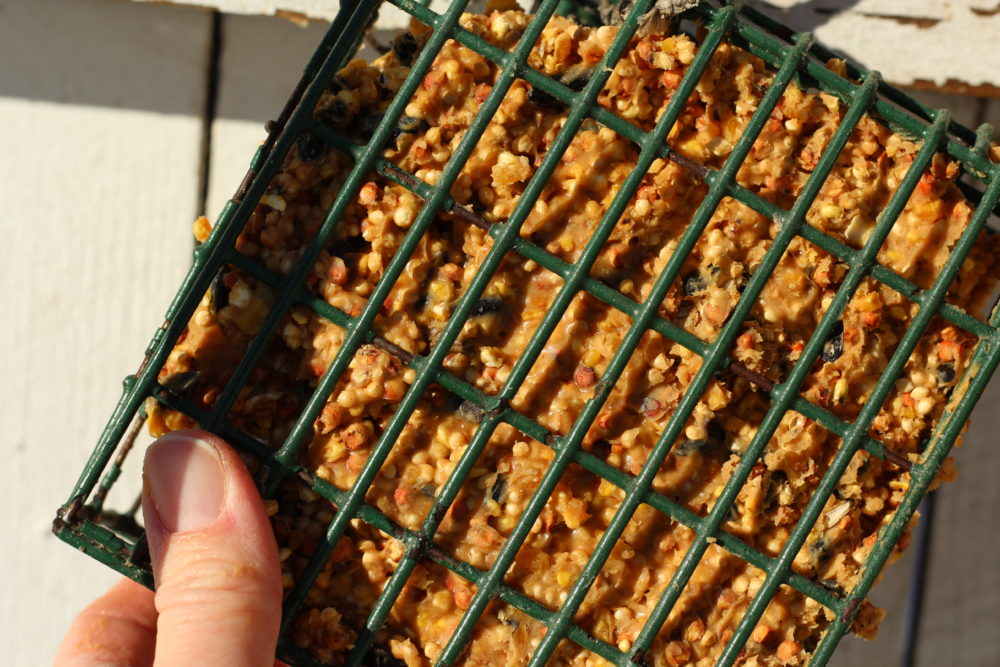 How To Make Bird Seed Cakes With Peanut Butter