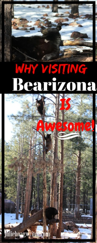 Why Visiting Arizona's Bearizona is Awesome Family travel and family vacation destination. Family fun. #familytravel #familyvacation #arizona #vacationtips #travelinspiration #traveling #familyfun #animals #bearizona #travel #travelblog #travelblogger #travelersnotebook #getaway #ustravel #travelingwithkids #zoo #attraction #tourism #tourist