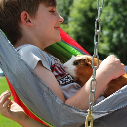 Portable Kids Hammock for the House, Backyard, and Camping