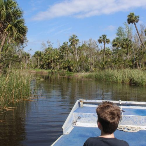 Why Airboat Rides in Florida are Fun and Exciting