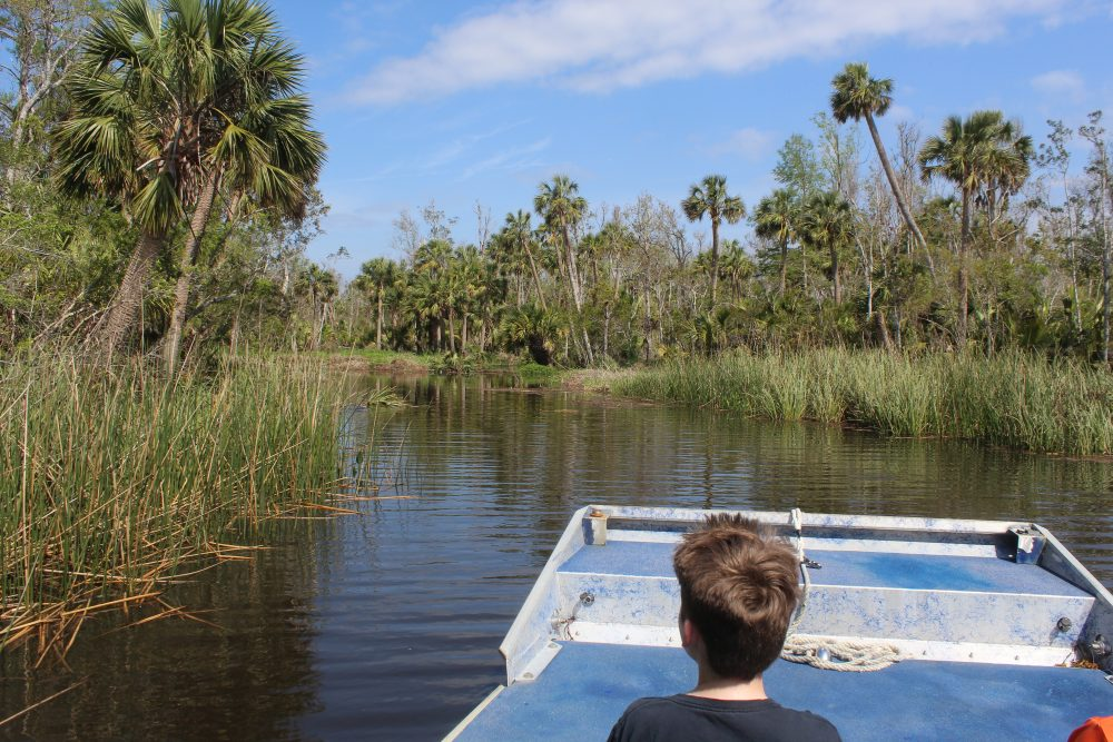 Why Airboat Rides in Florida are Fun and Exciting. The airboat ride was both educational and entertaiining, a great family fun activity. We loved learned about and seeing the wild alligators.