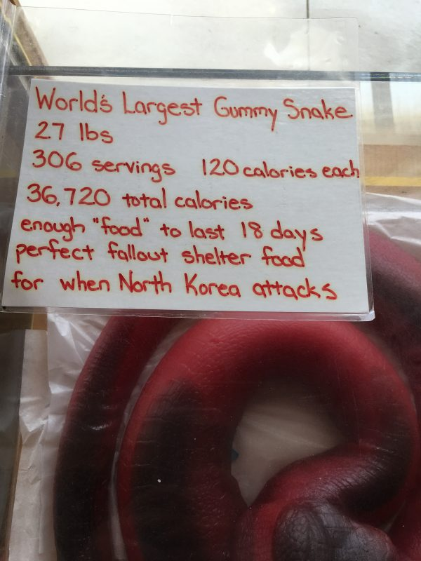Minnesota's Largest Candy Store in Jordan giant snake gummy stats