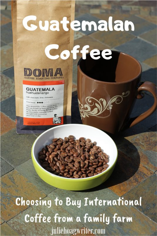 Guatemalan coffee choosing to buy international coffee from a family farm
