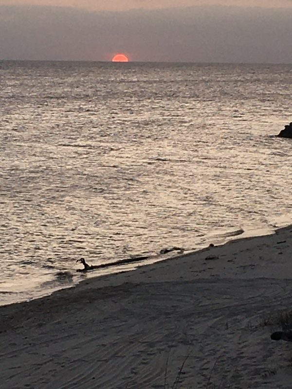 gorgeous ocean sunset
