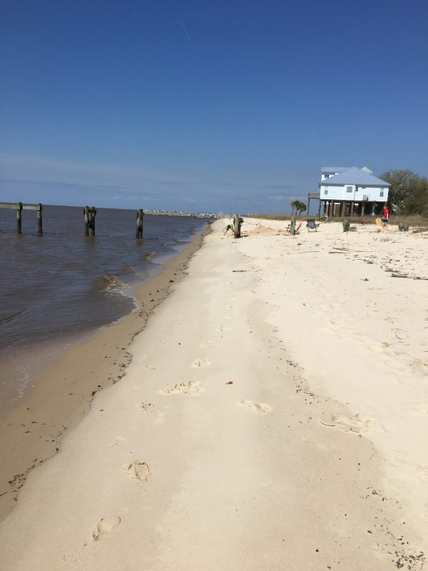 Gulf of Mexico beach Seaside House Rentals