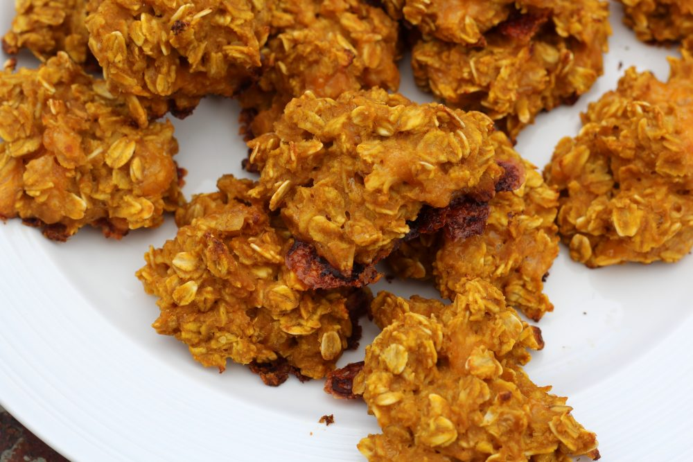 Homemade Dog Treats With Rolled Oats Dogs Will Love A Family Lifestyle Food Blog