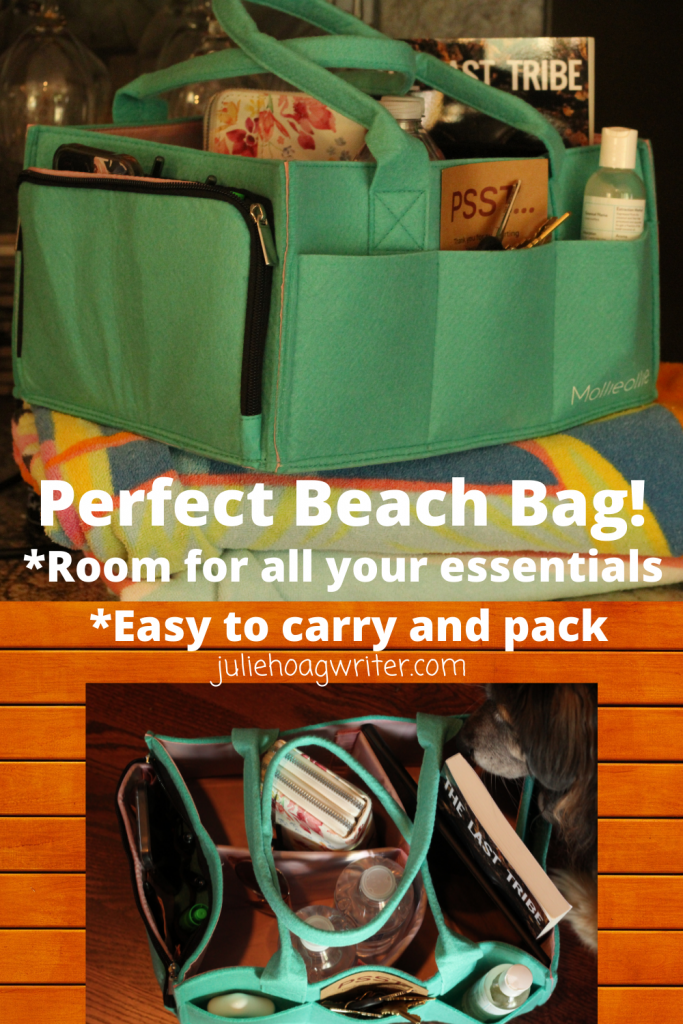 Mom hack organizational caddy great for packing up for the beach