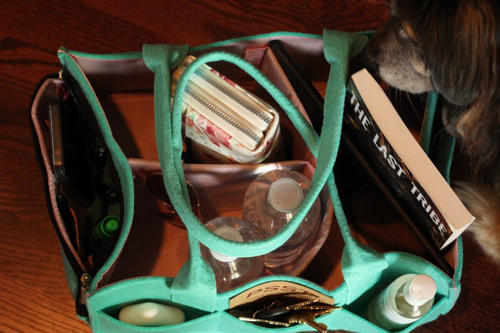Organizational caddy for busy moms and busy people on the go, an organization hack, mom hack